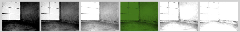 slothlarge-copy1.jpg