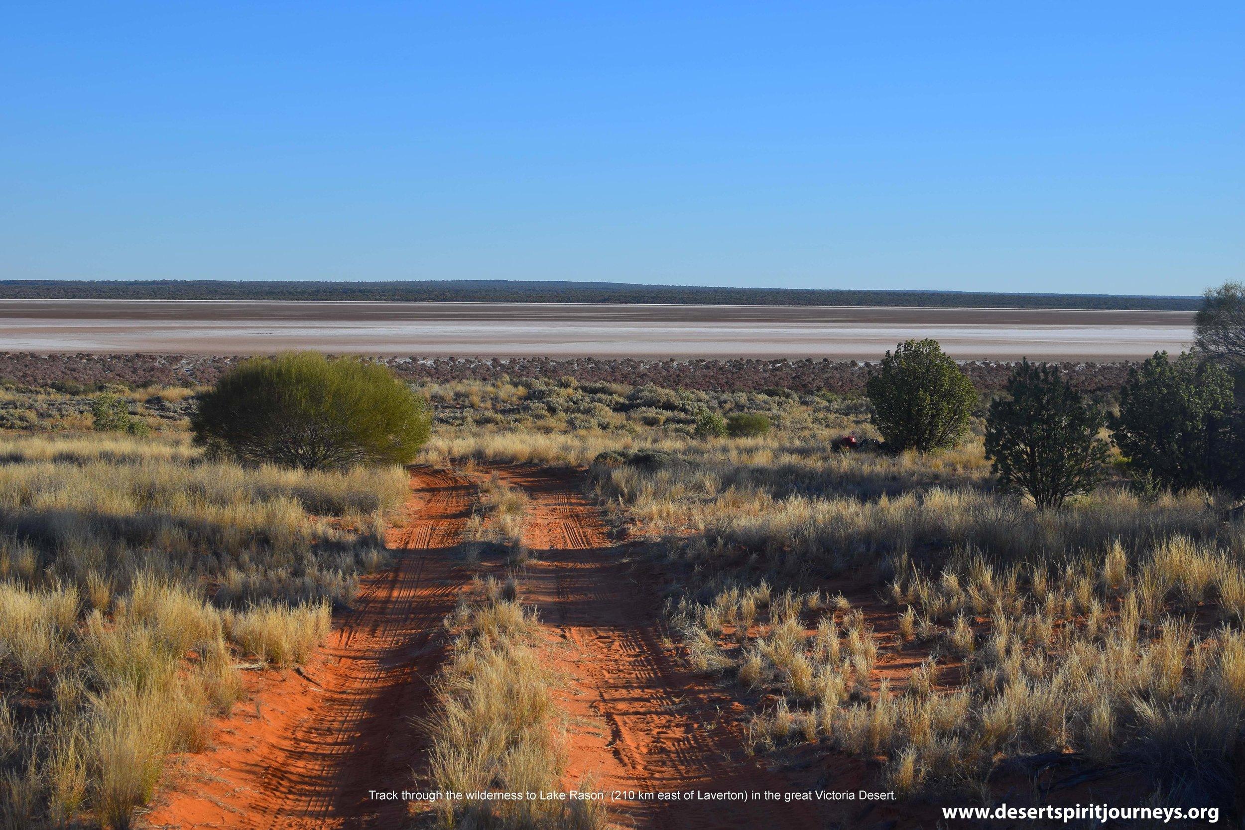 Desert Track.jpg