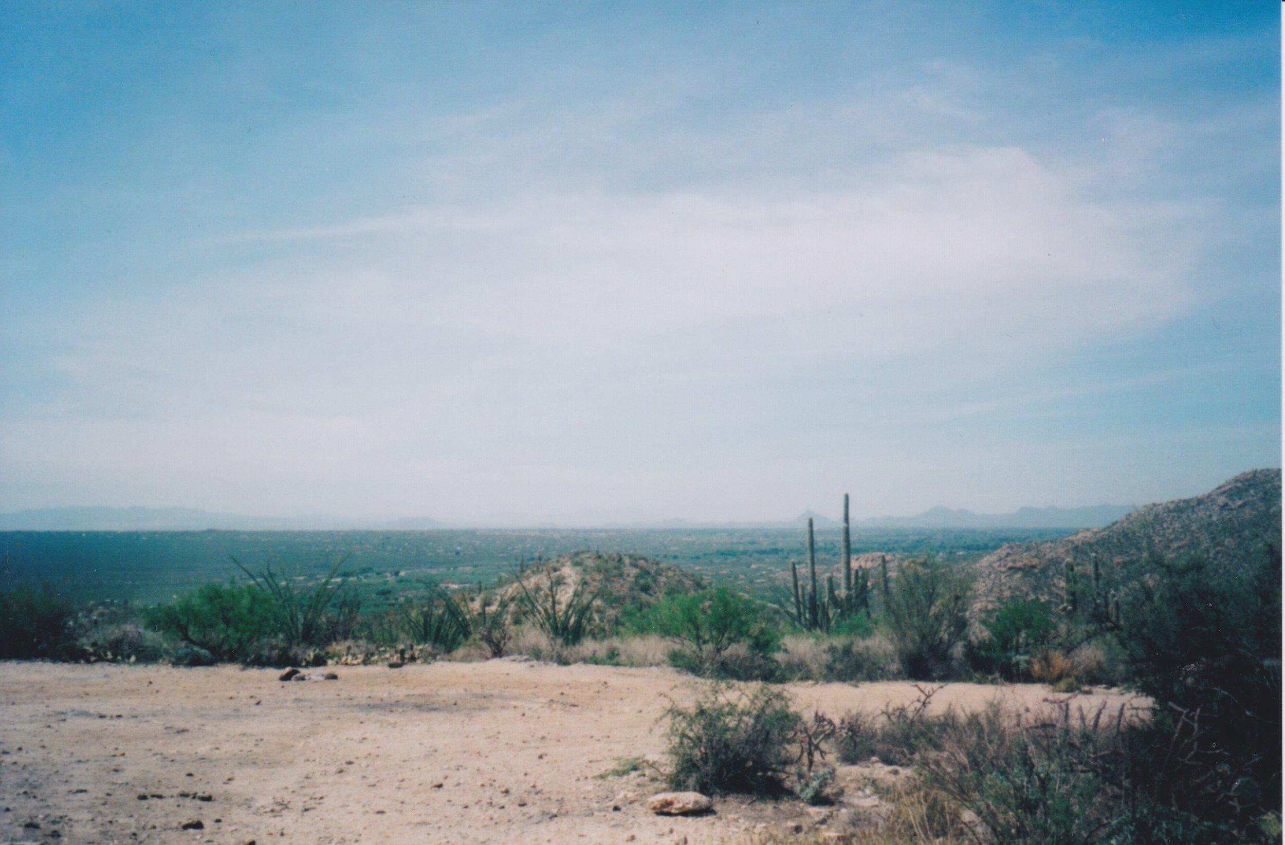 arizona 24.jpeg