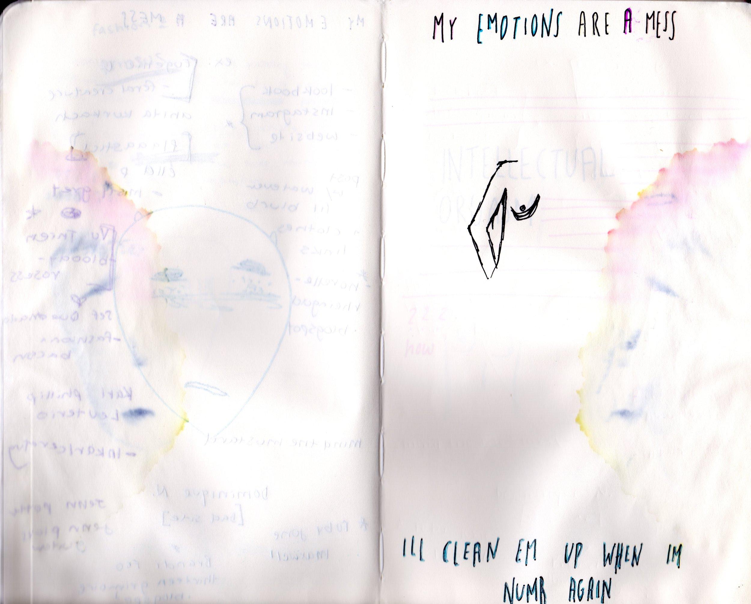 15-2013.jpg