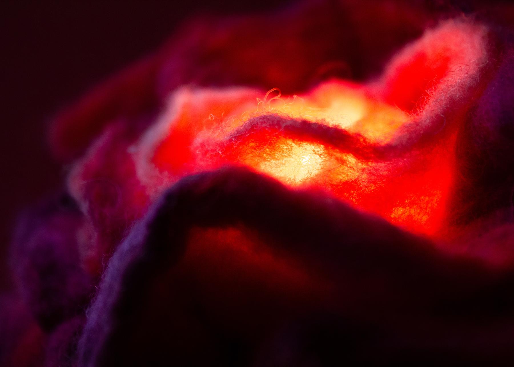 felt-flower-lamp_Cherry-Rose_Adelya-Tumasyeva_7.jpg