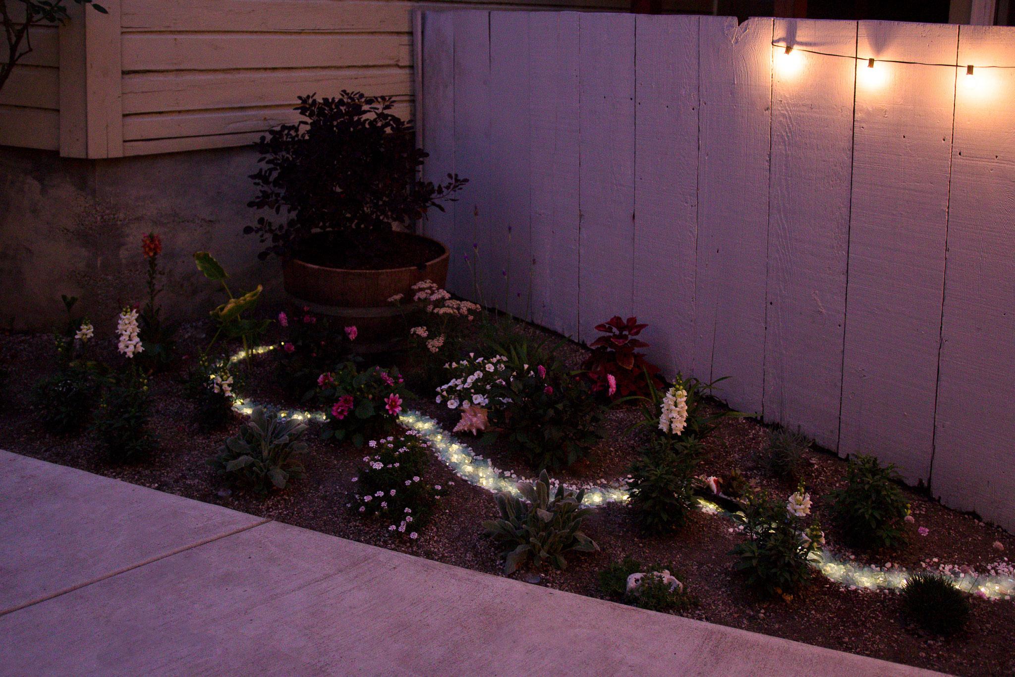 Adelya_Tumasyeva_the-garden-project_34.jpg