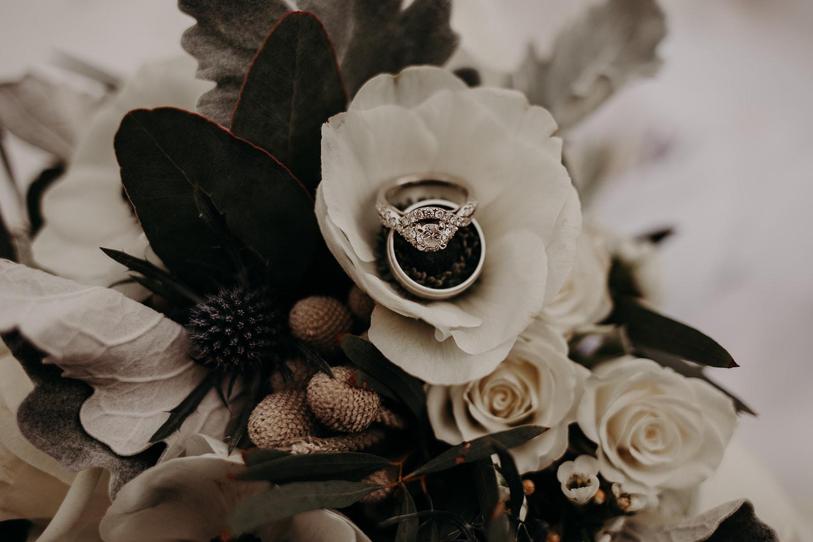 winter-mountain-elopement-asheville-wedding-photographer-megan-gallagher-photographer (1).jpg