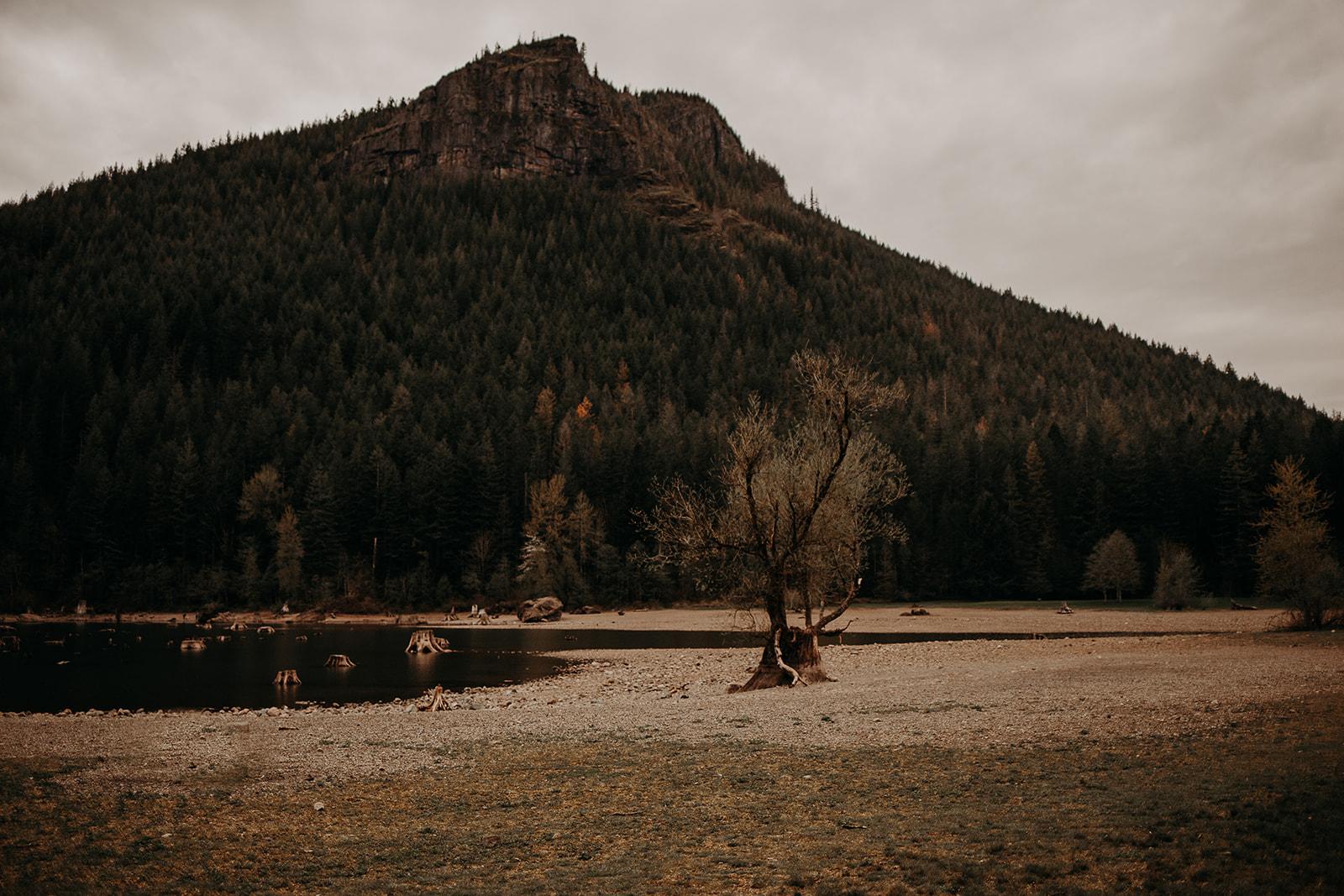 winter-mountain-elopement-asheville-wedding-photographer-megan-gallagher-photographer (64).jpg