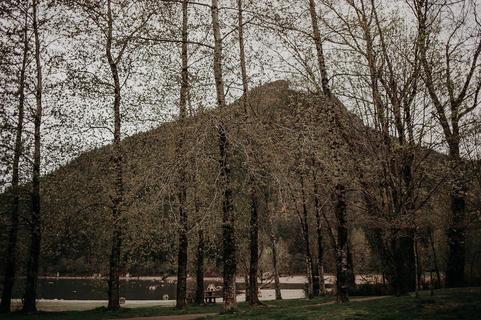 winter-mountain-elopement-asheville-wedding-photographer-megan-gallagher-photographer (63).jpg