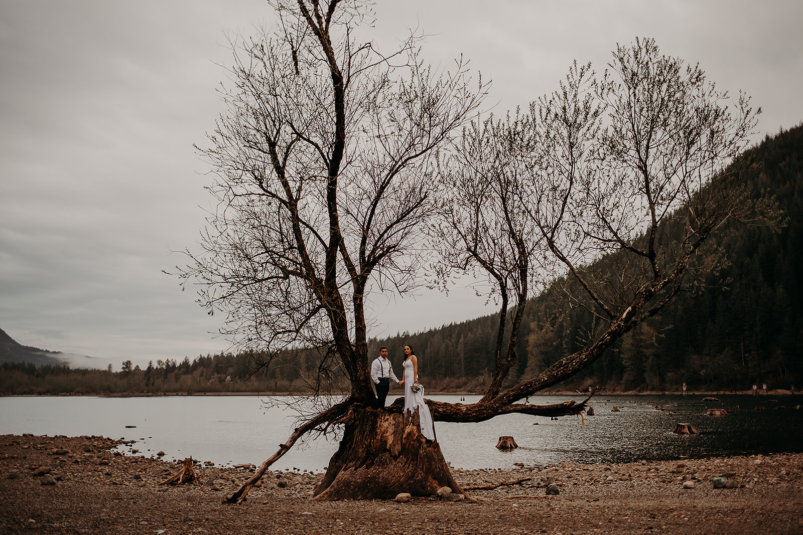 winter-mountain-elopement-asheville-wedding-photographer-megan-gallagher-photographer (71).jpg