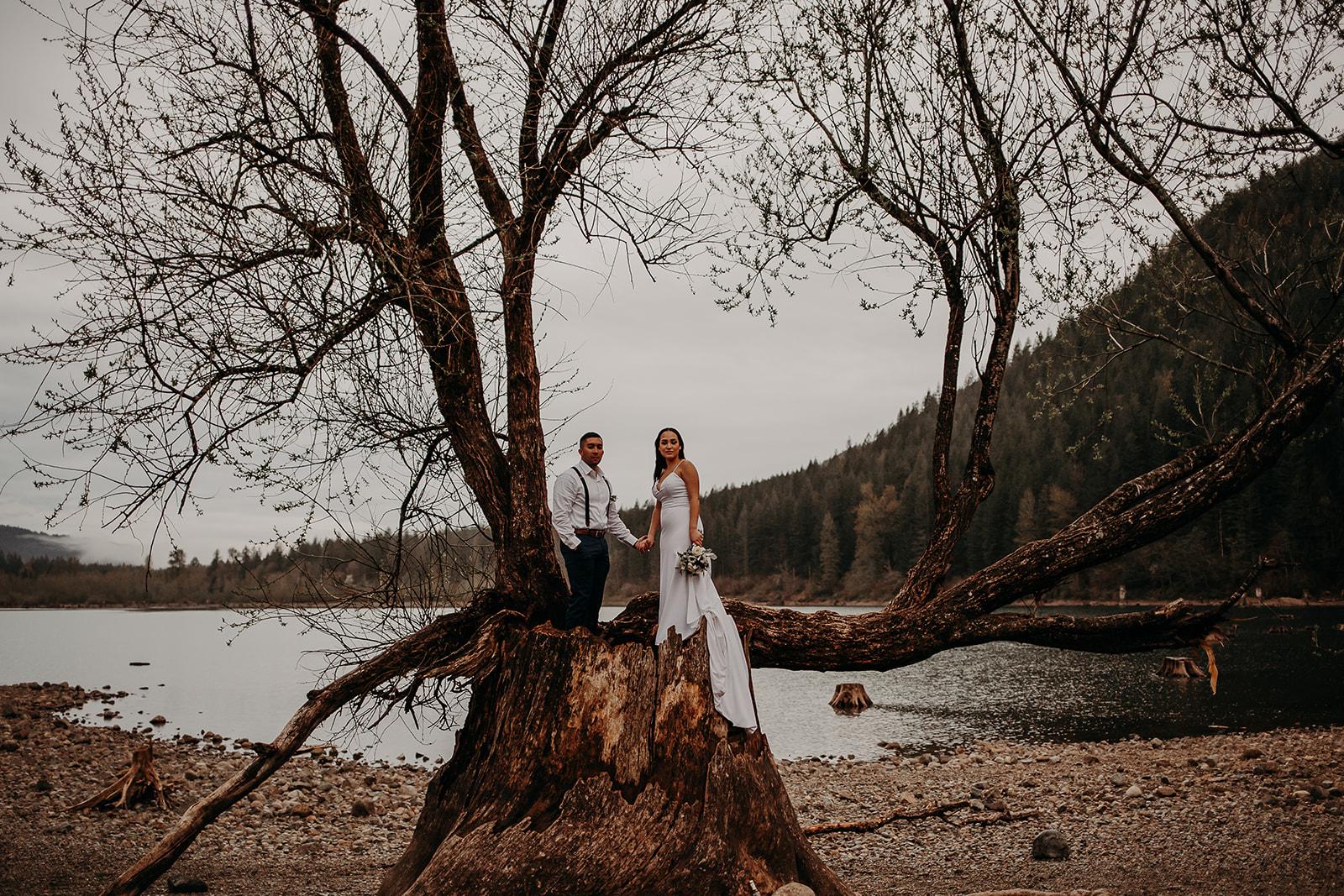 winter-mountain-elopement-asheville-wedding-photographer-megan-gallagher-photographer (73).jpg