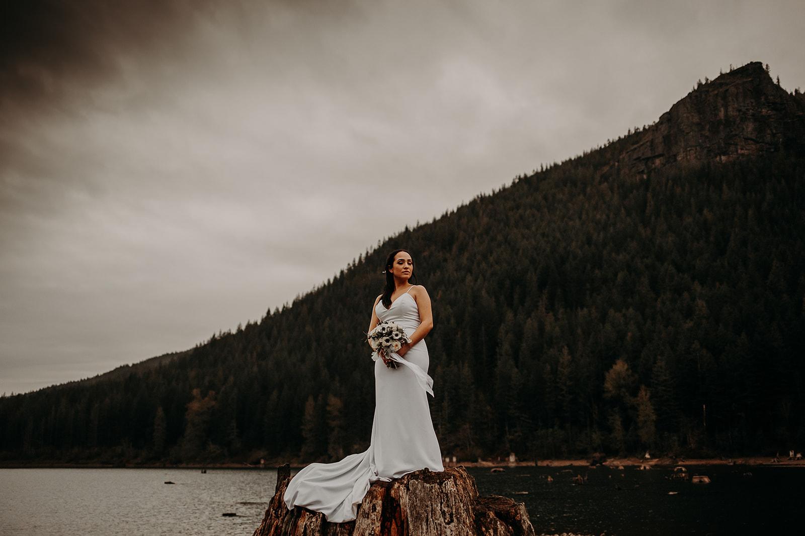 winter-mountain-elopement-asheville-wedding-photographer-megan-gallagher-photographer (82).jpg