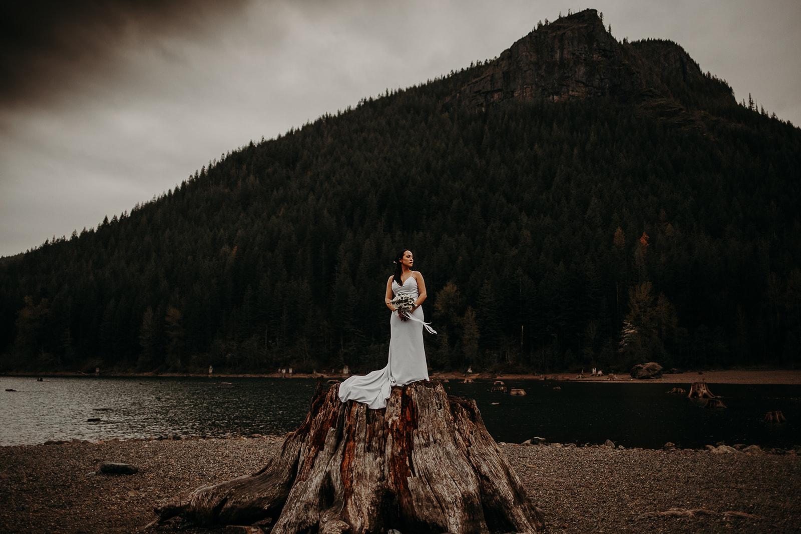 winter-mountain-elopement-asheville-wedding-photographer-megan-gallagher-photographer (81).jpg