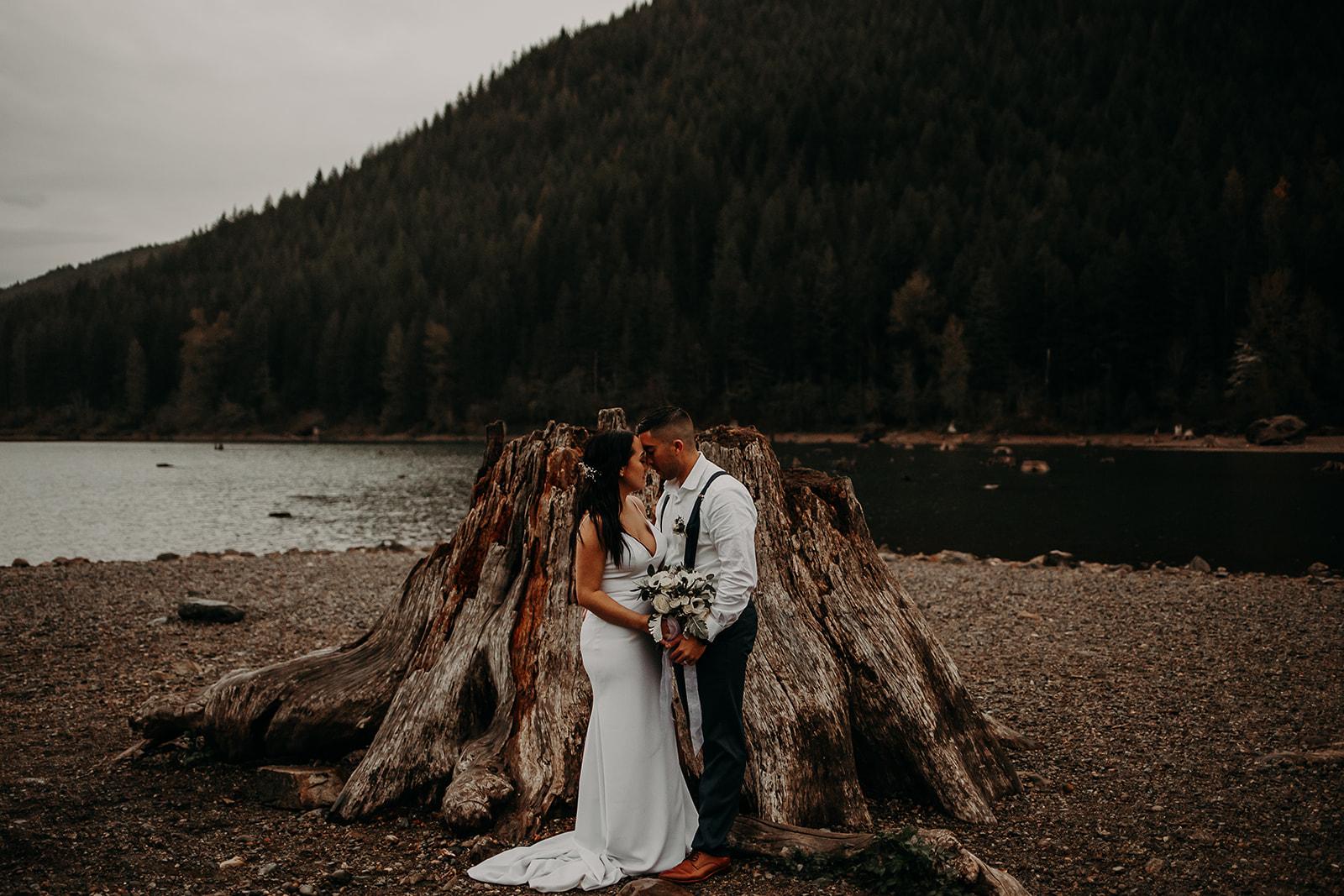 winter-mountain-elopement-asheville-wedding-photographer-megan-gallagher-photographer (83).jpg