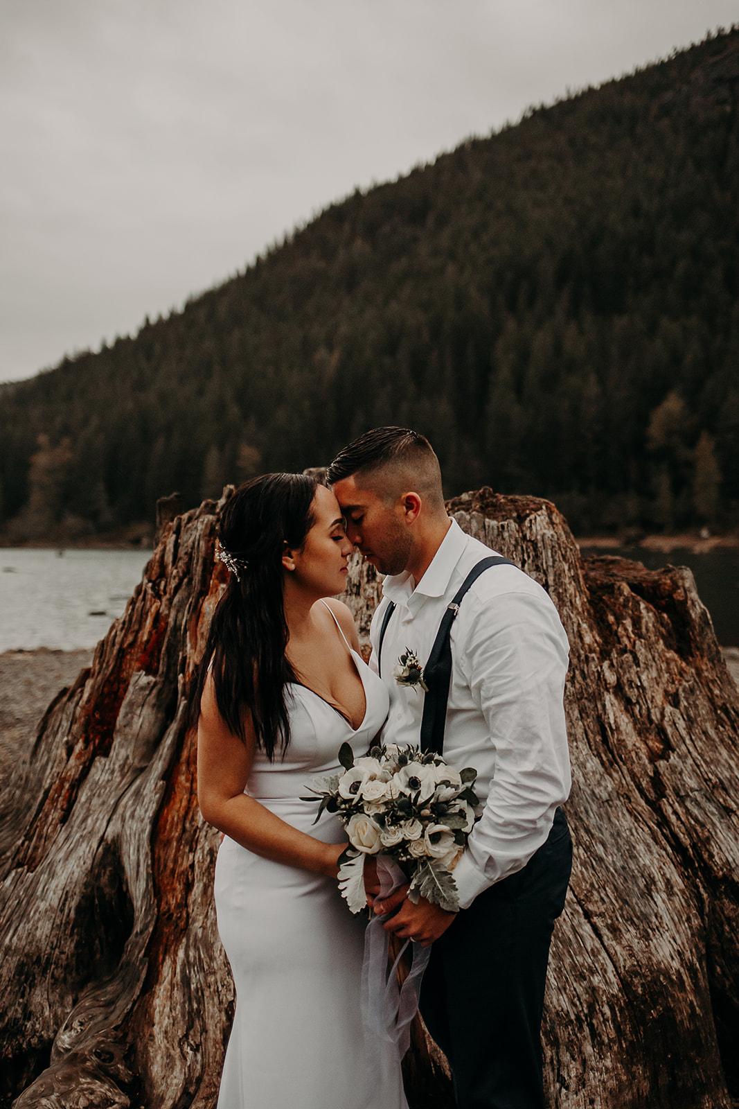 winter-mountain-elopement-asheville-wedding-photographer-megan-gallagher-photographer (84).jpg