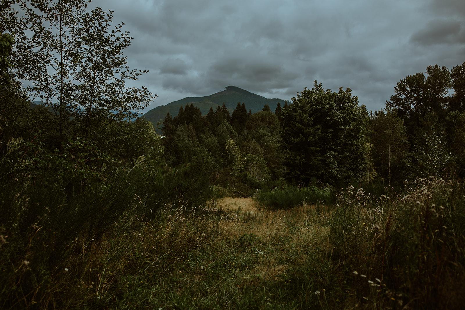 mount-rainier-cabin-elopement-megan-gallagher-photography_(2_of_568).jpg