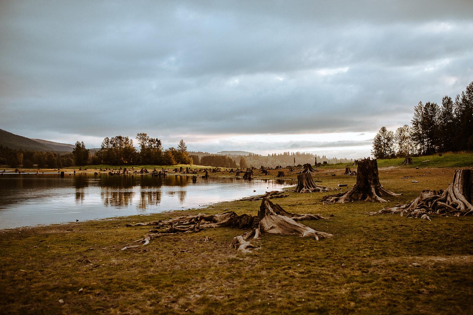 mount-rainier-cabin-elopement-megan-gallagher-photography_(471_of_568).jpg