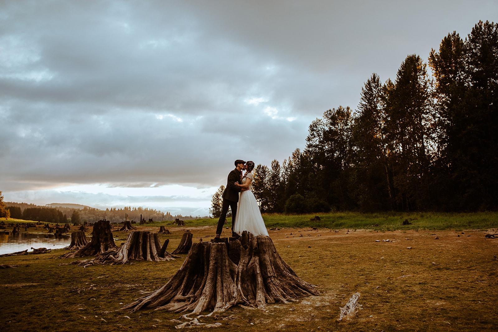 mount-rainier-cabin-elopement-megan-gallagher-photography_(483_of_568).jpg