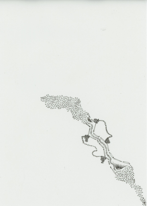 022019.43.Perfume.jpg