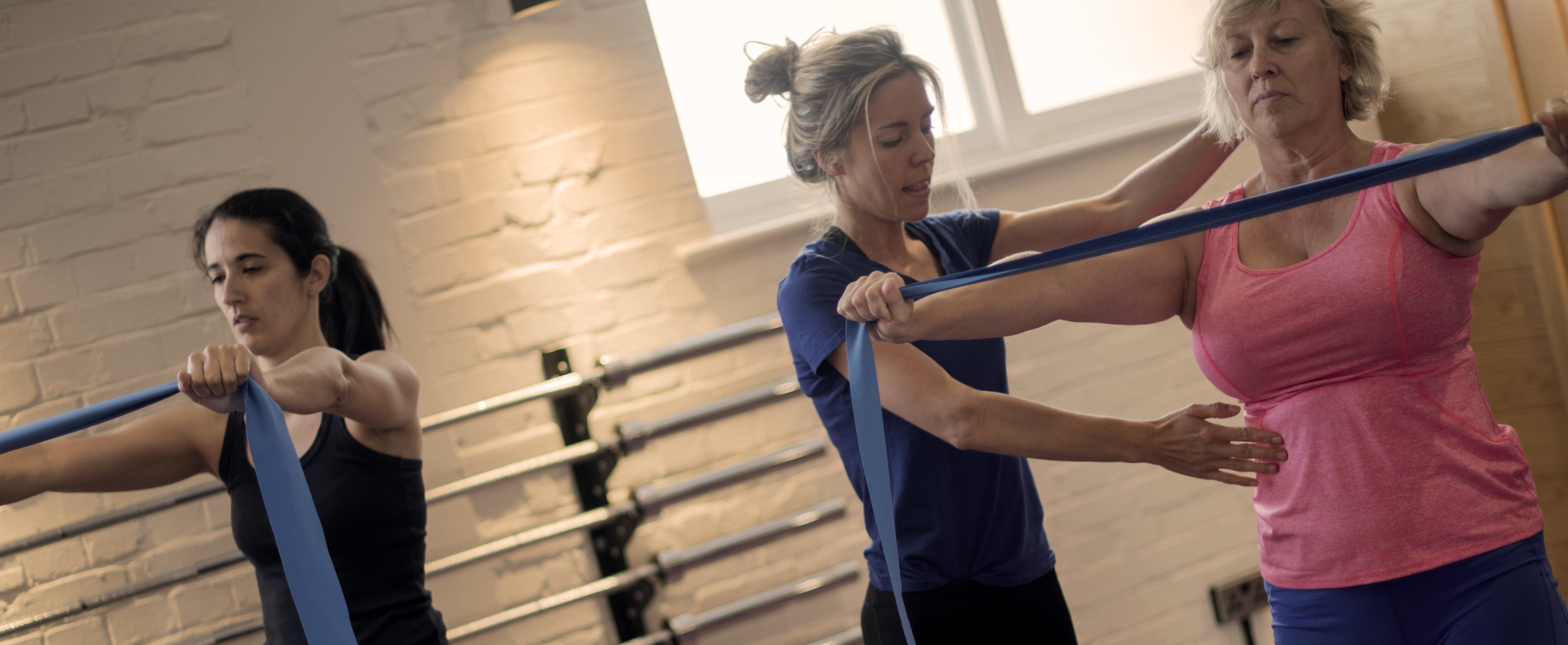 Holistic Core and Restore Course - Exercises