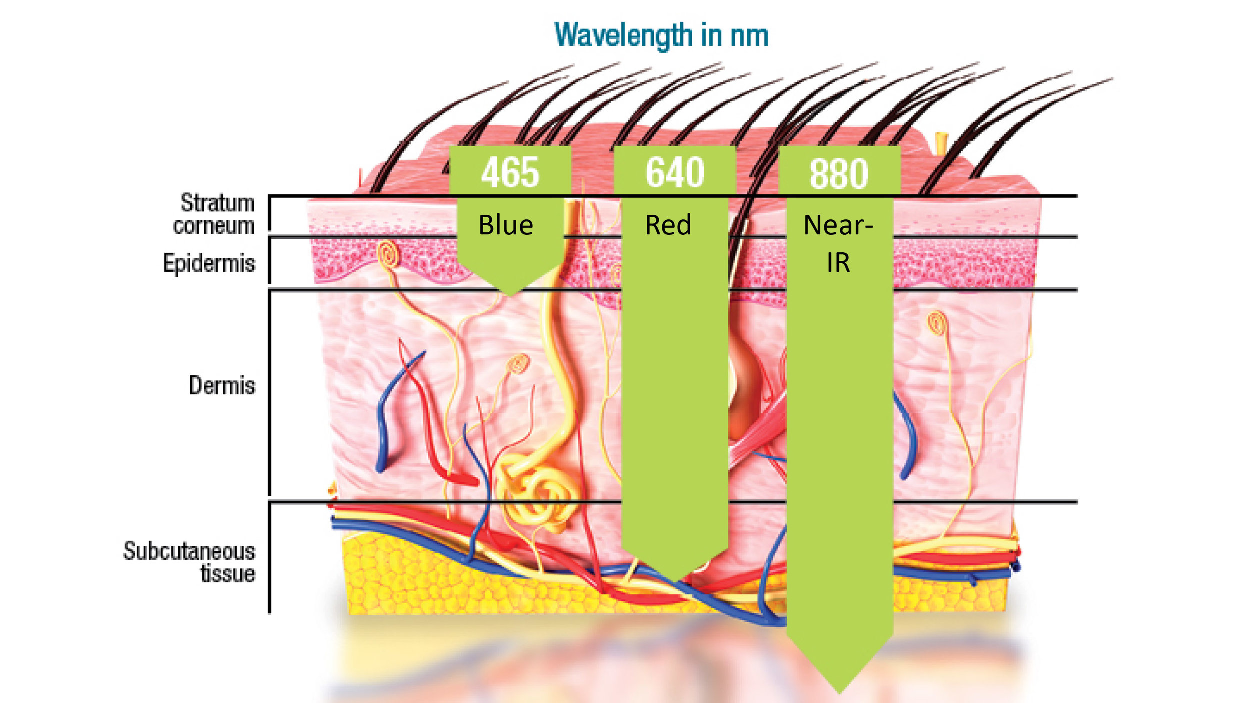 Celluma Wavelengths