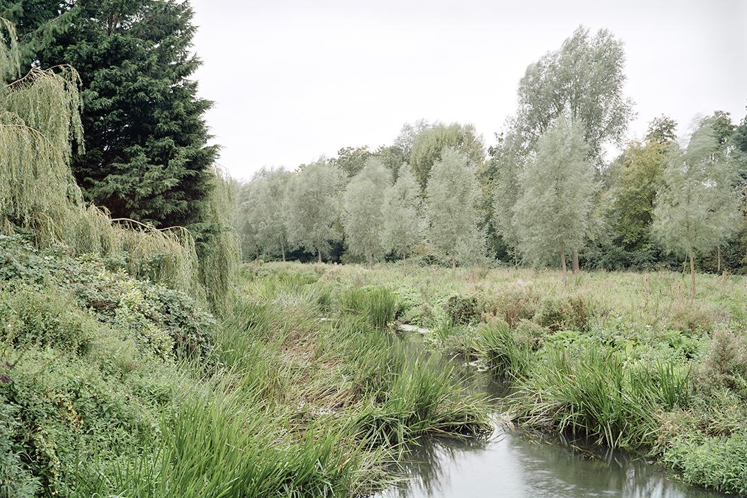 Coggeshall River