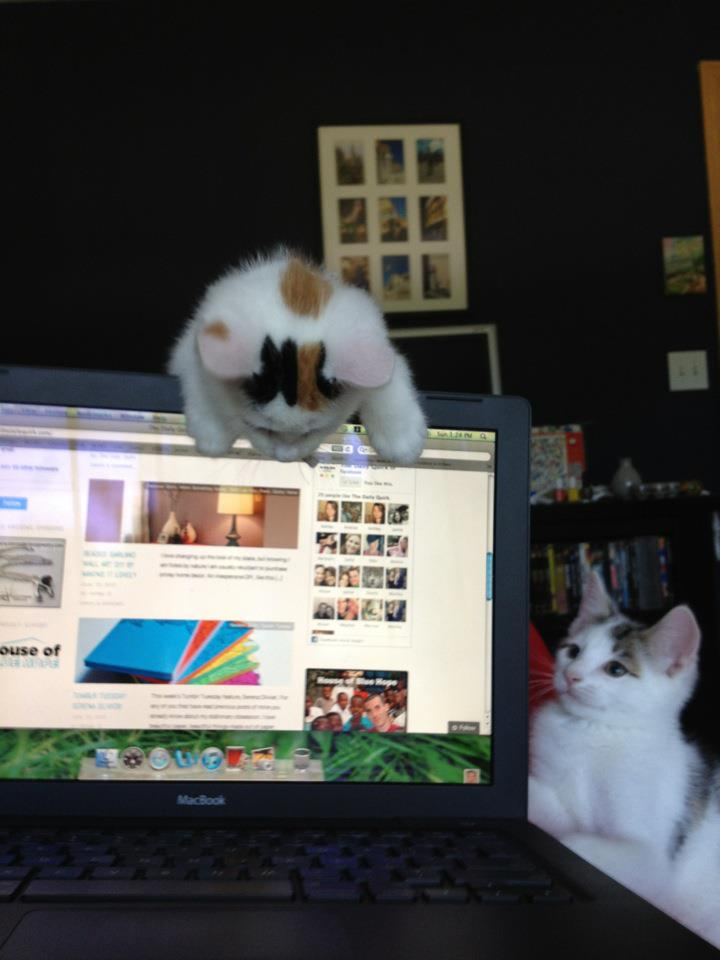 Blogging Staff 2