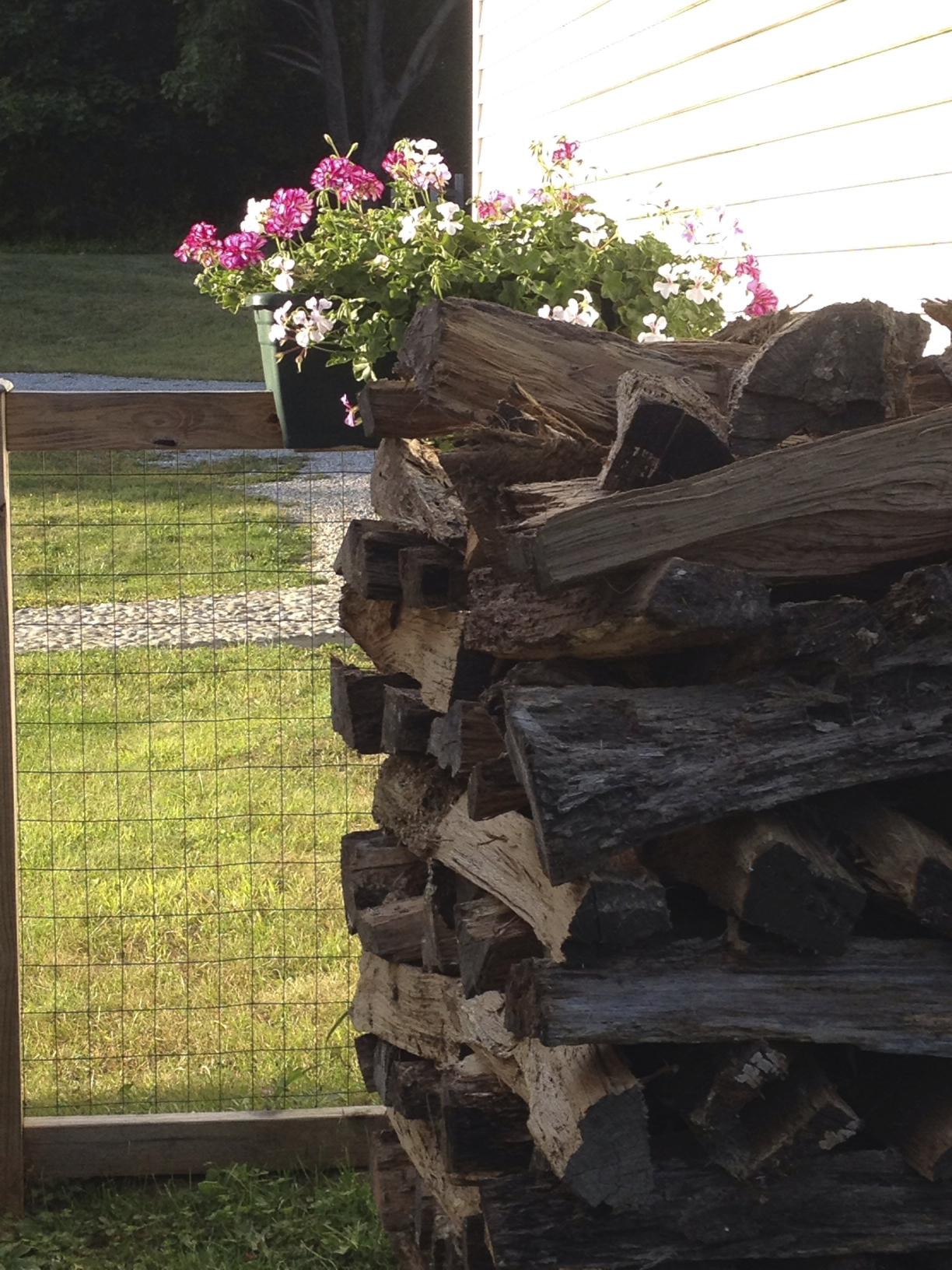 fall-wood-stack-for-winter.jpg