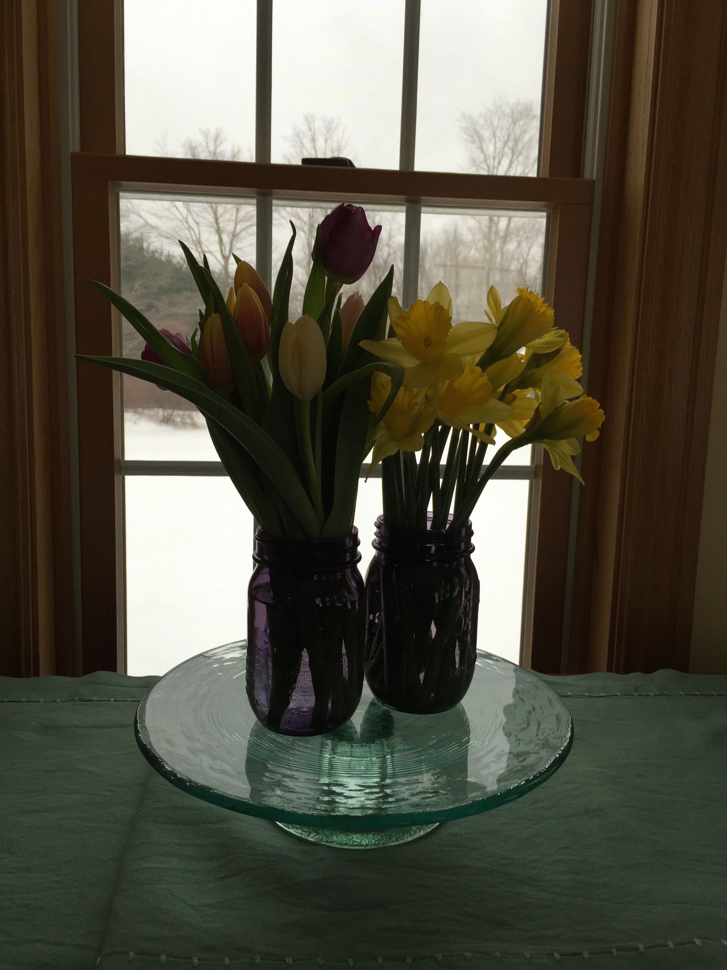 Daffodils and Tulips to remind us that Spring is near!