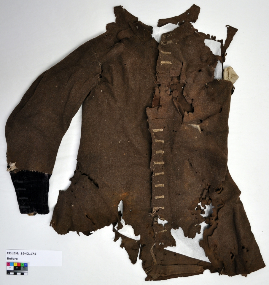 Original coat, before treatment