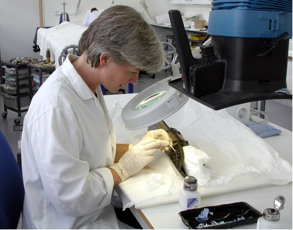 Kate Gill removing corrosion from a distana