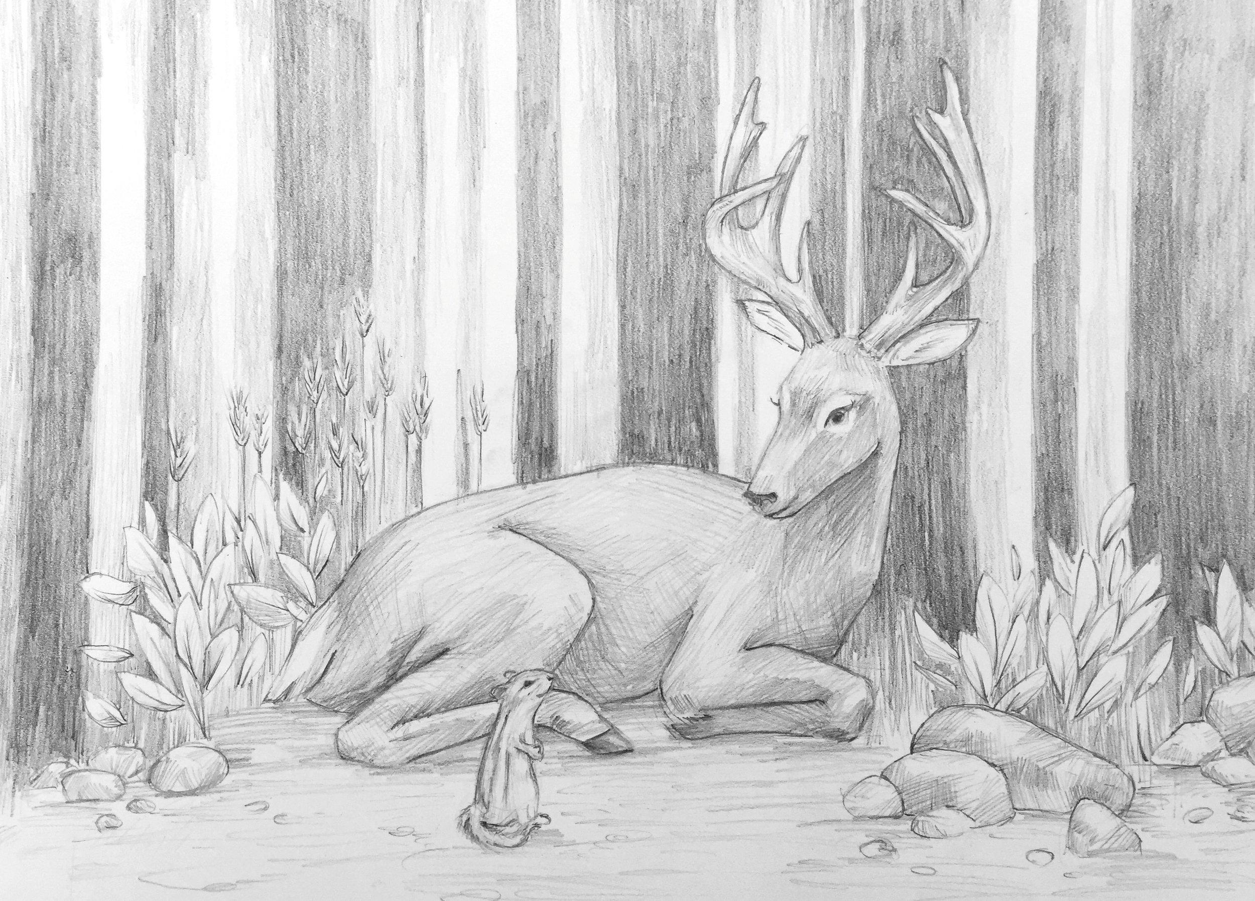 Little Deer 4.jpg