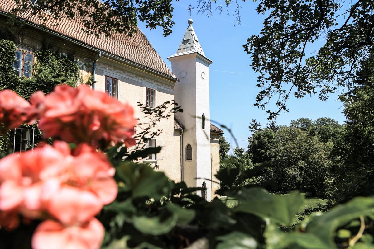Idyllische natur - Wer seine Hochzeit zu einem Naturerlebnis im Freien machen möchte ist hier genau richtig. Der Schlossgarten bietet die perfekte Möglichkeit für Trauungen mit anschließender Agape im Grünen. Der 20.000qm große Garten mit alten Eichen und dem mit Efeu bewachsene Schloss bietet die perfekt Kulisse für ihre Hochzeit.
