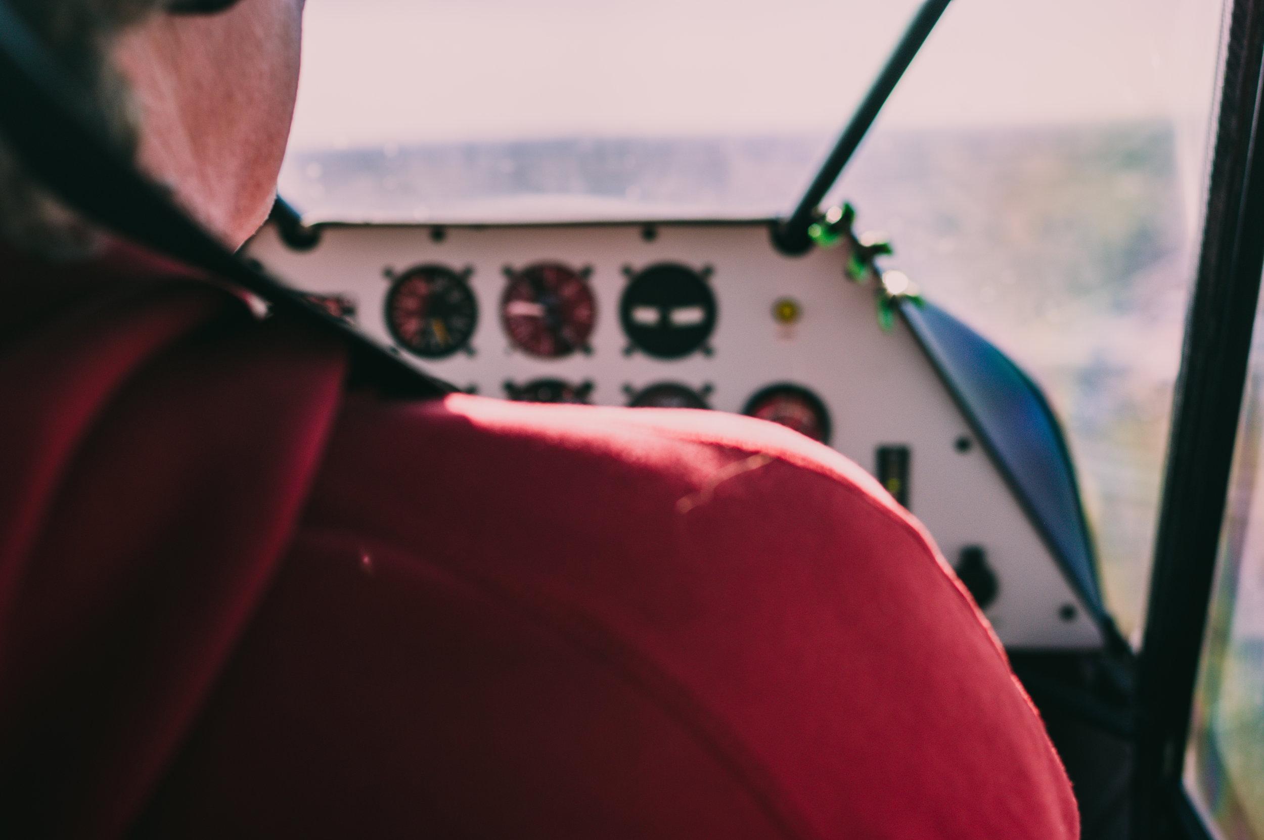 Fly-6.jpg