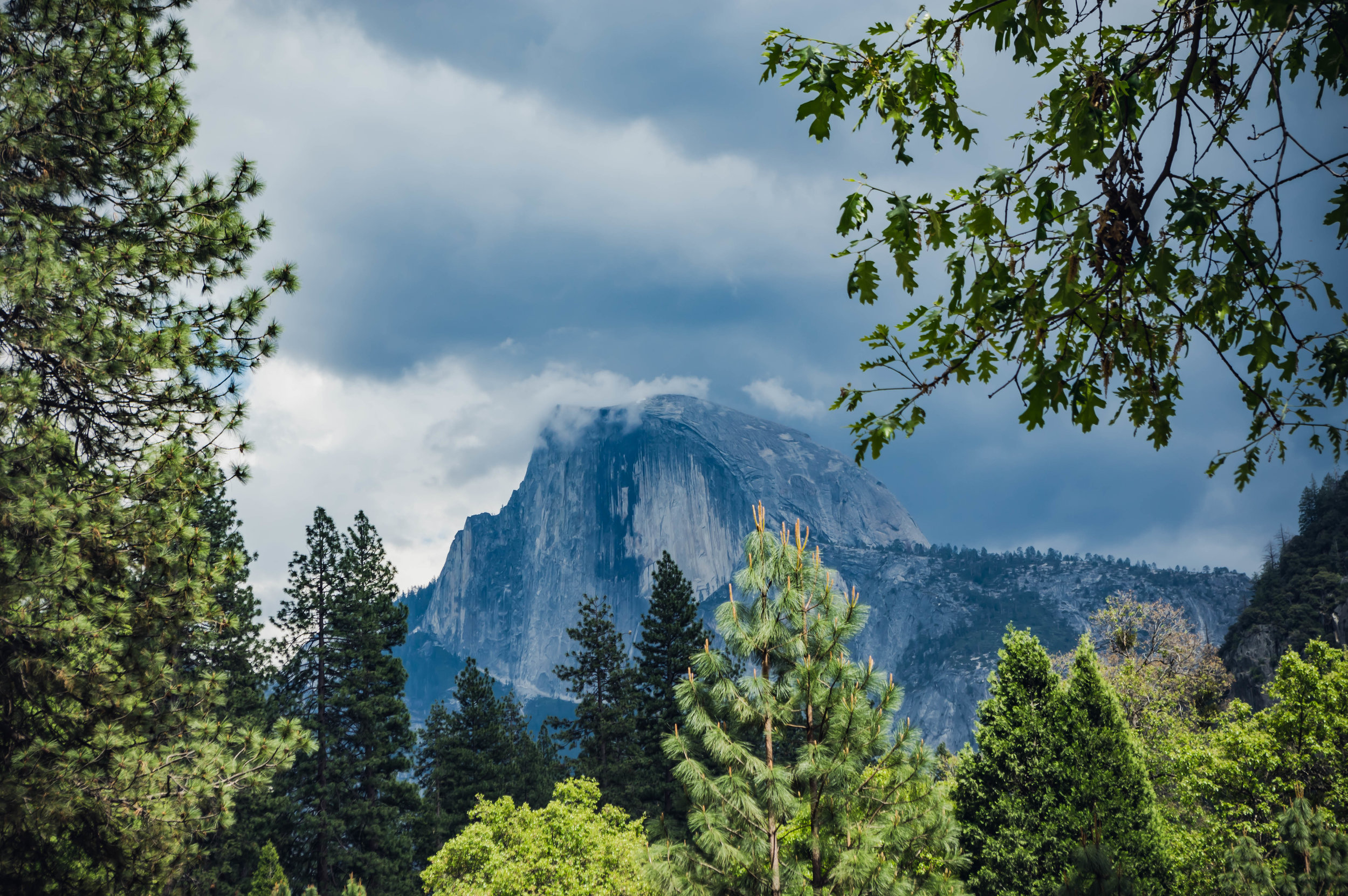 Half Dome as seen from Camp 4