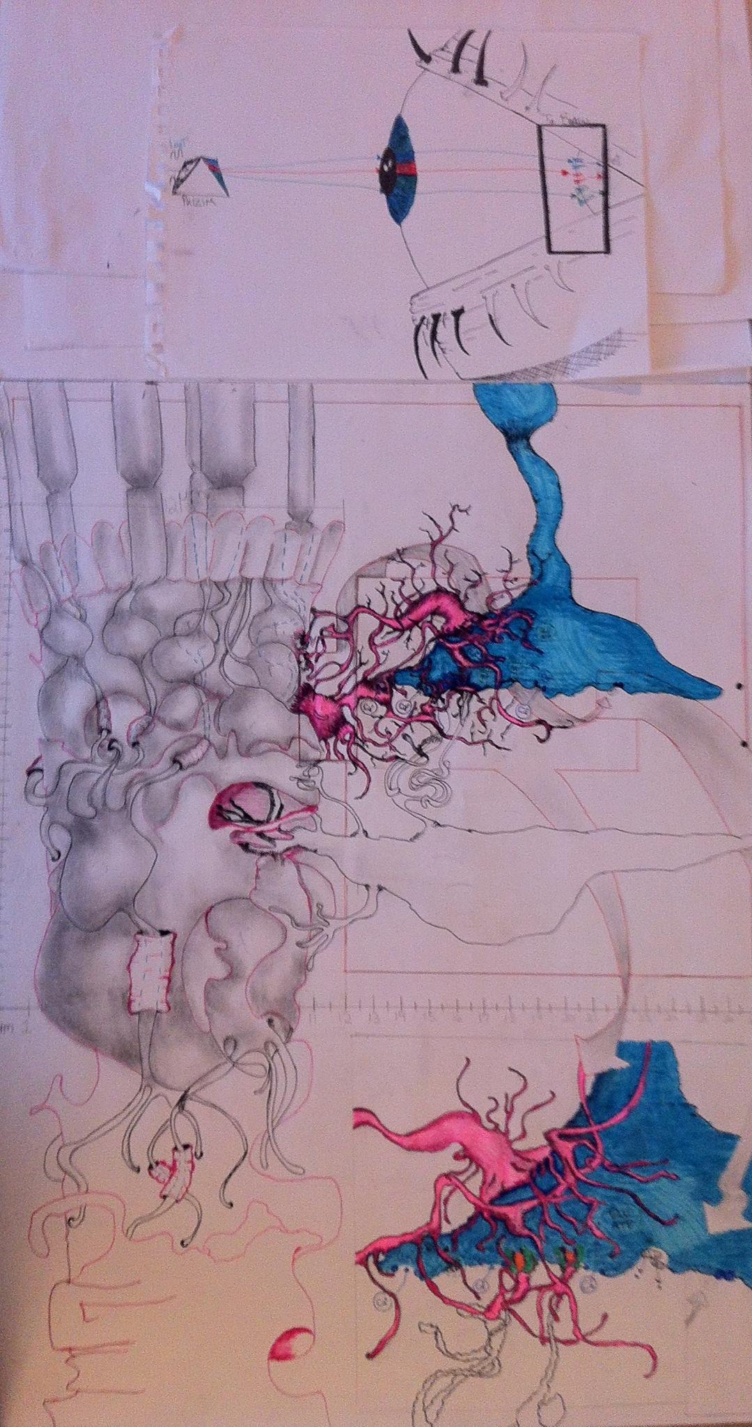 Muller Cell Rendering.JPG