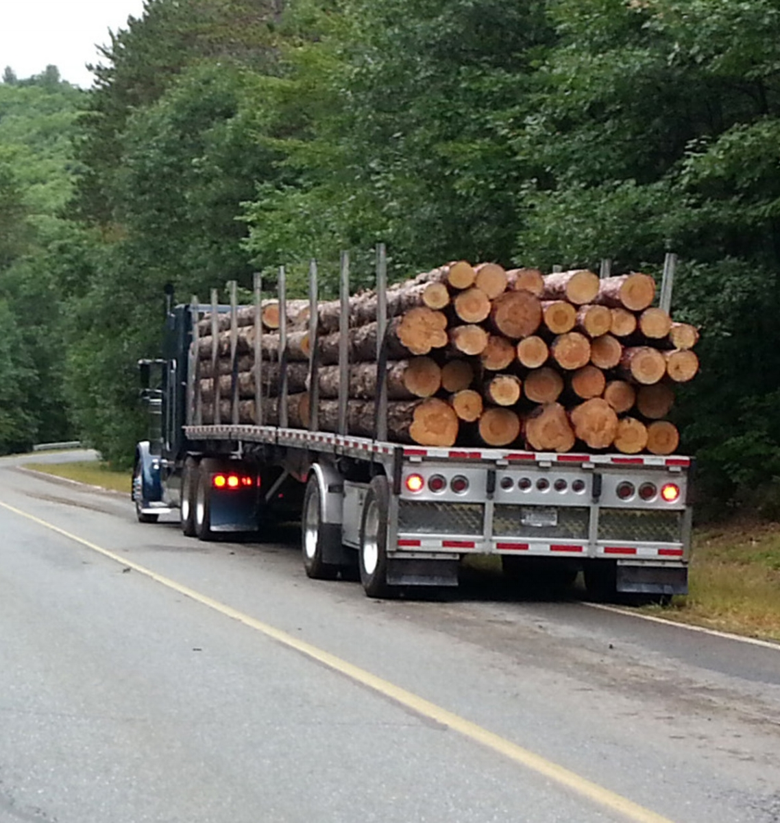Logs leaving Wendell State Forest, September 2018