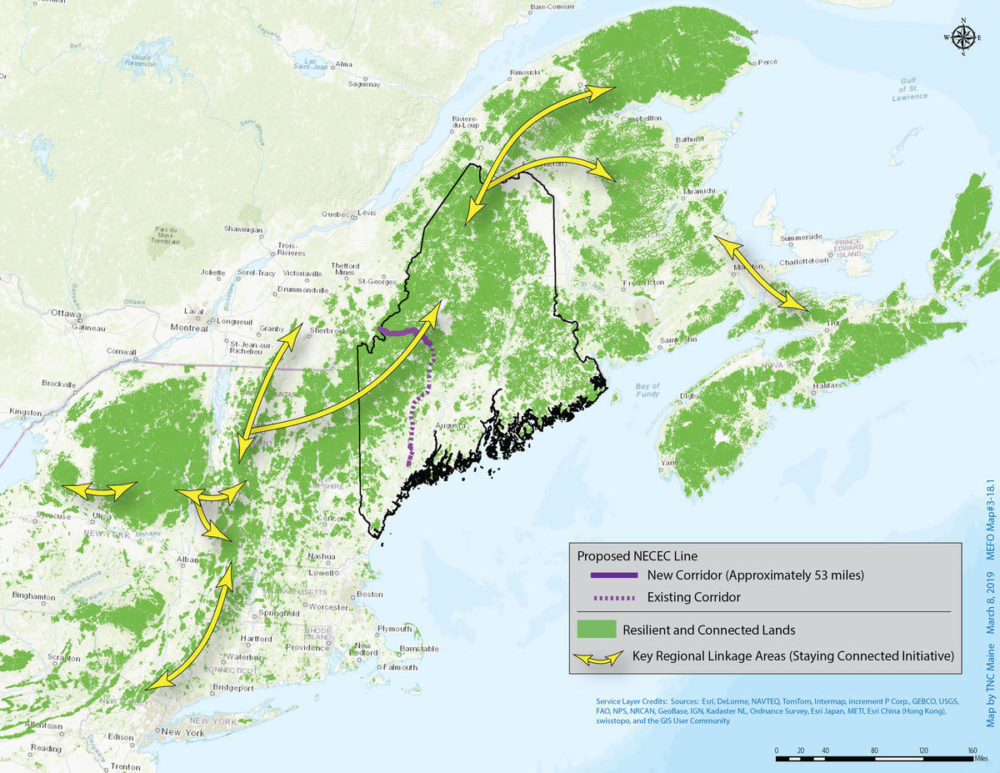 This map shows the interconnectedness of the forests in New England and Canada, and the high value of the area where Central Maine Power wants to clearcut a transmission corridor. (credit: The Nature Conservancy)