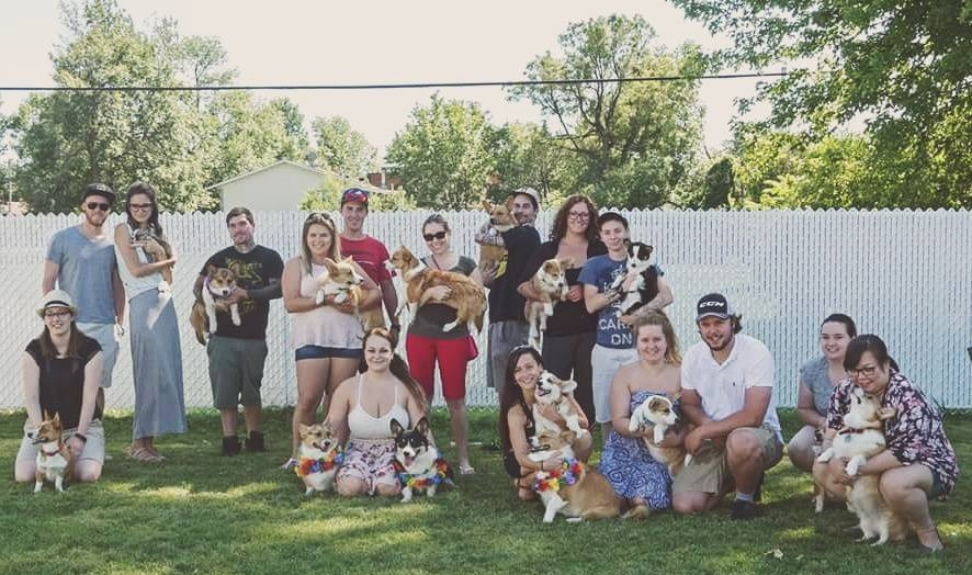SUMMER PARTY It's a Corgi tail family 2017