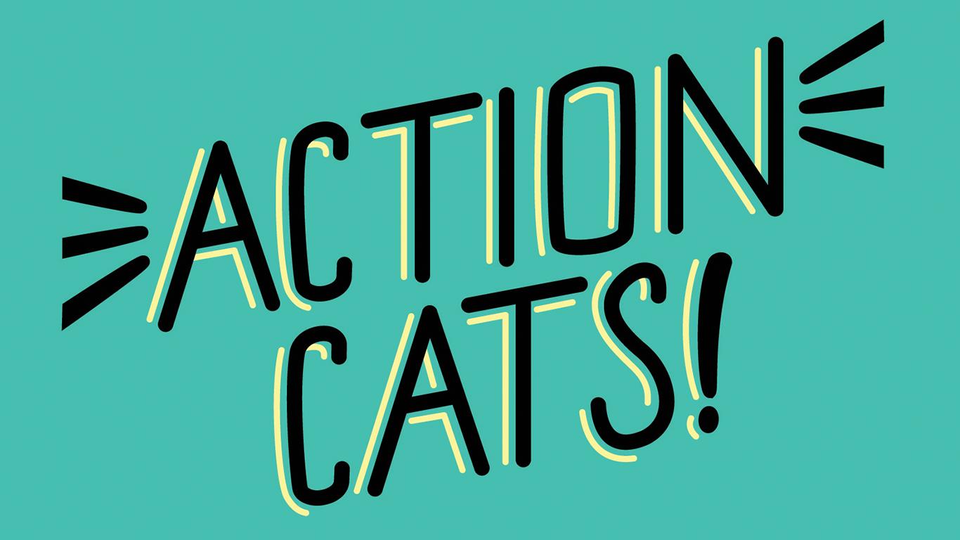 ActionCatsWeb.jpg