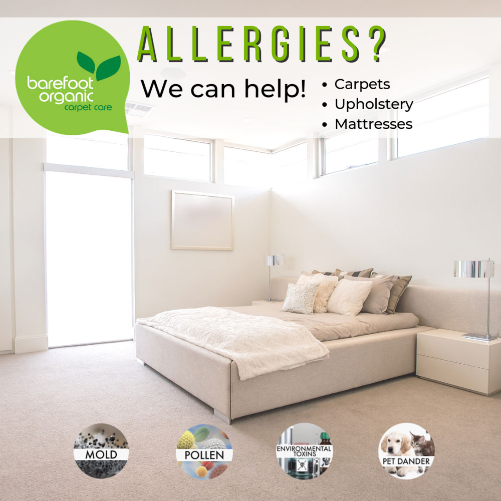 clean white room with typography describing how we can help with allergies