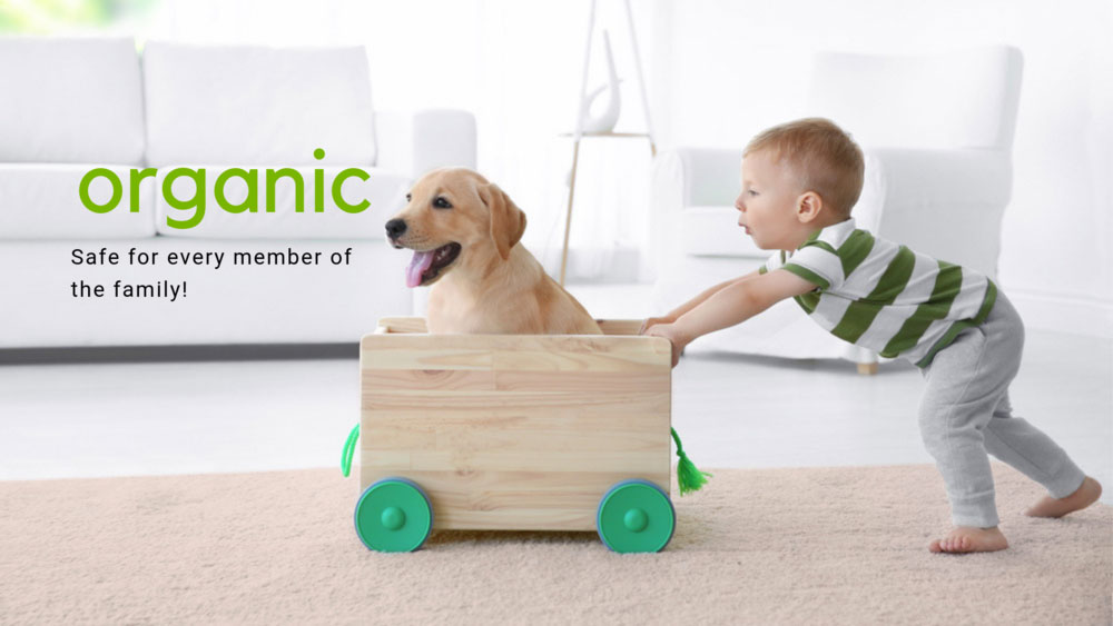 Organic and clean carpets Child with Puppy on Carpet