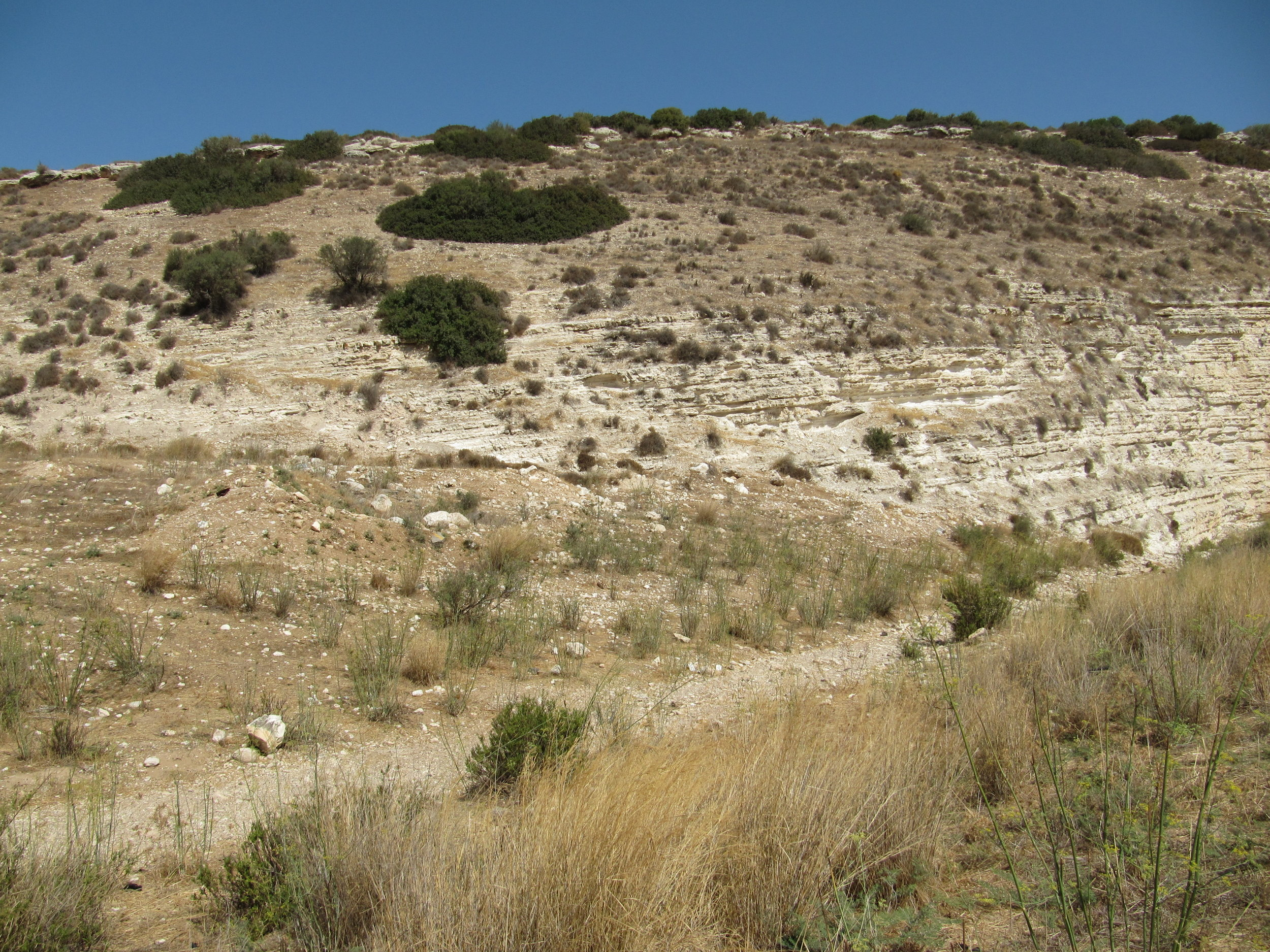 The ancient mound of Socoh - Notice the dry creek bed where water naturally flows...
