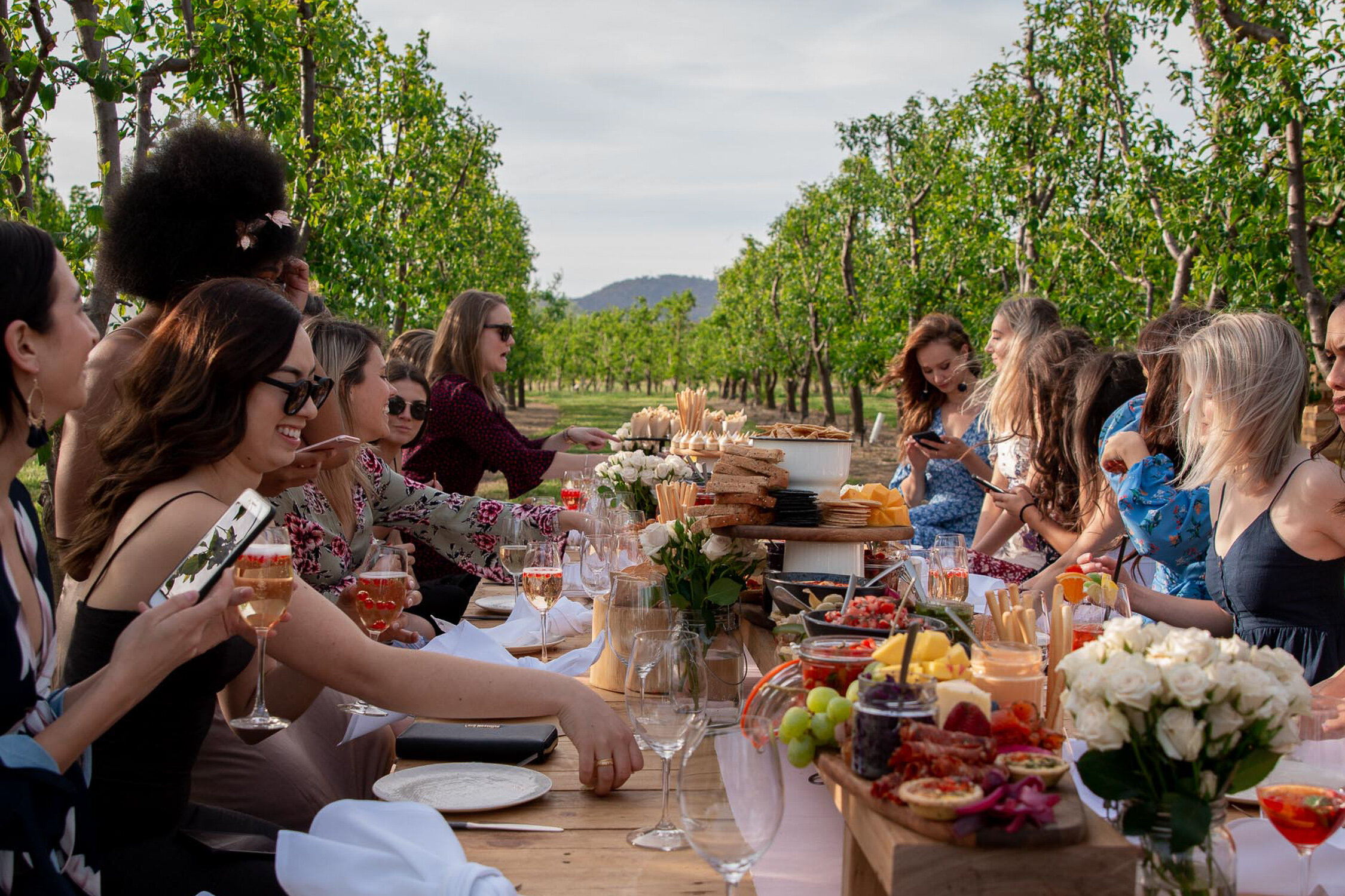 Examples only of setup and food above. This experience may be in either the olive grove or orchard.