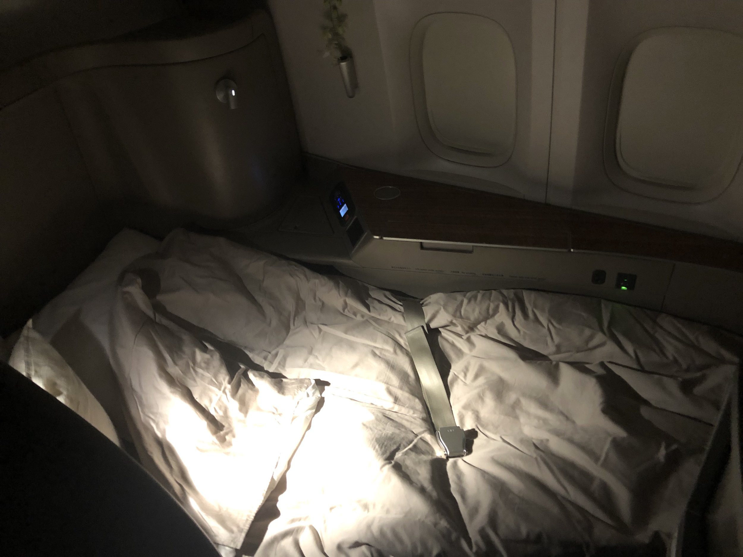 My comfy bed for the flight