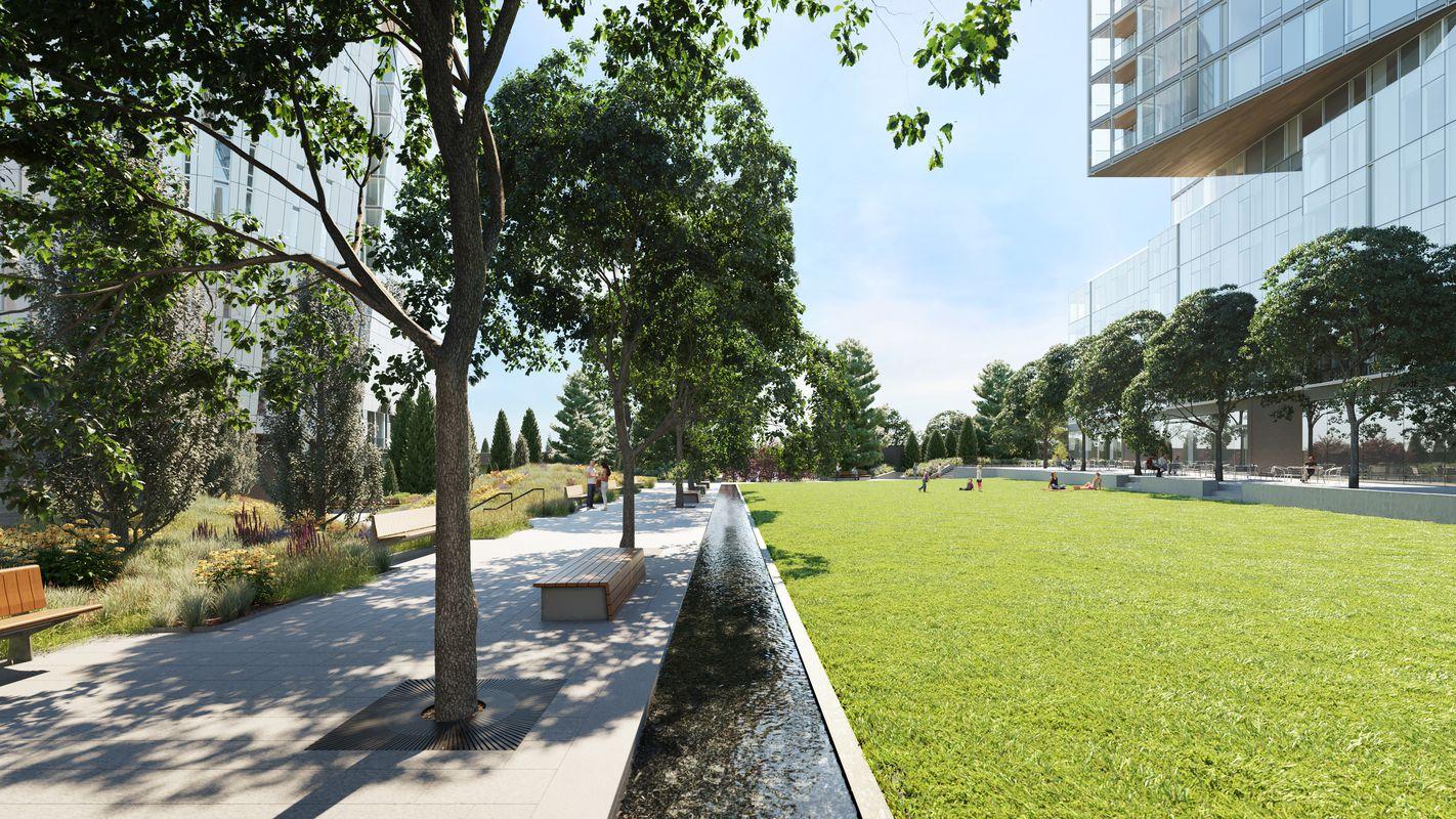 公园绿地里有一条人造小溪
