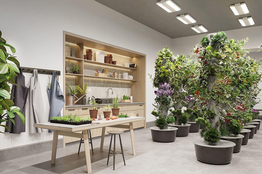 温室可栽种自己的蔬菜瓜果
