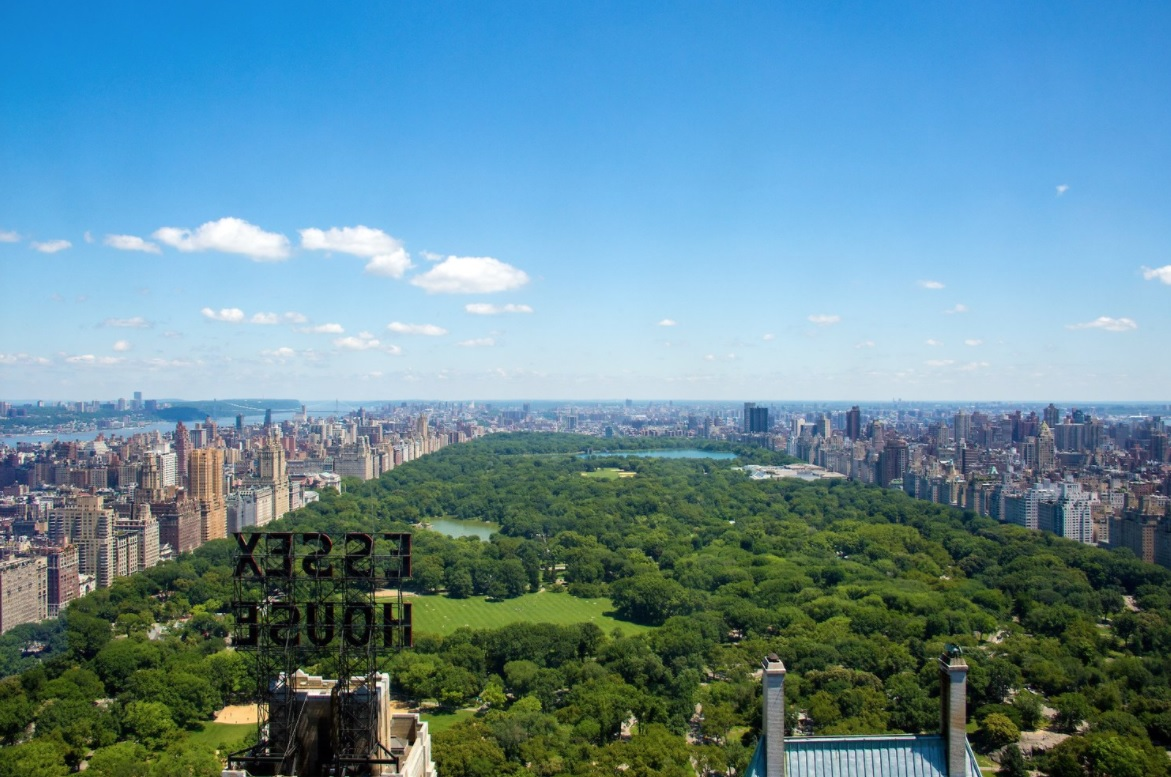 Central Park View.jpg