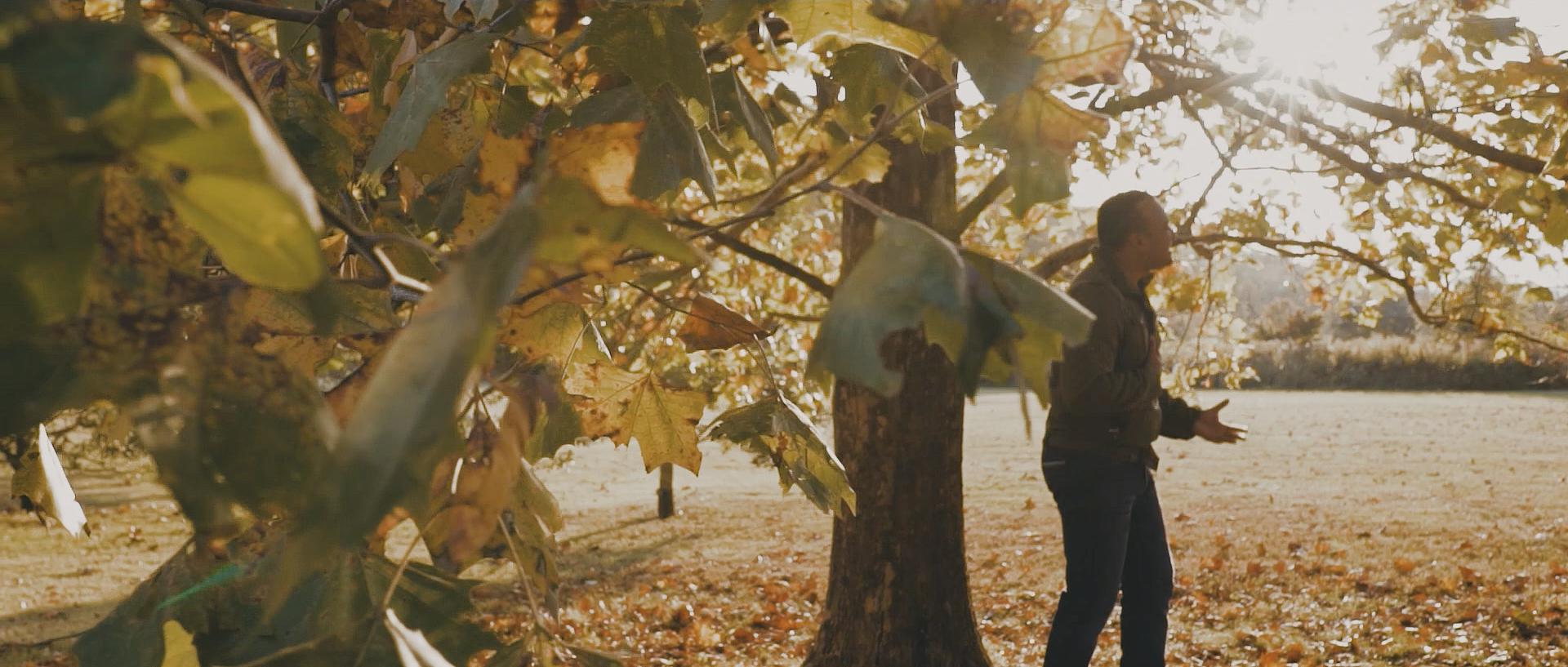 Stills - Cinema - Dp - Frame- Cinematographer - Miguel Bautista - Production - Filmmaking - Cine 020.jpg