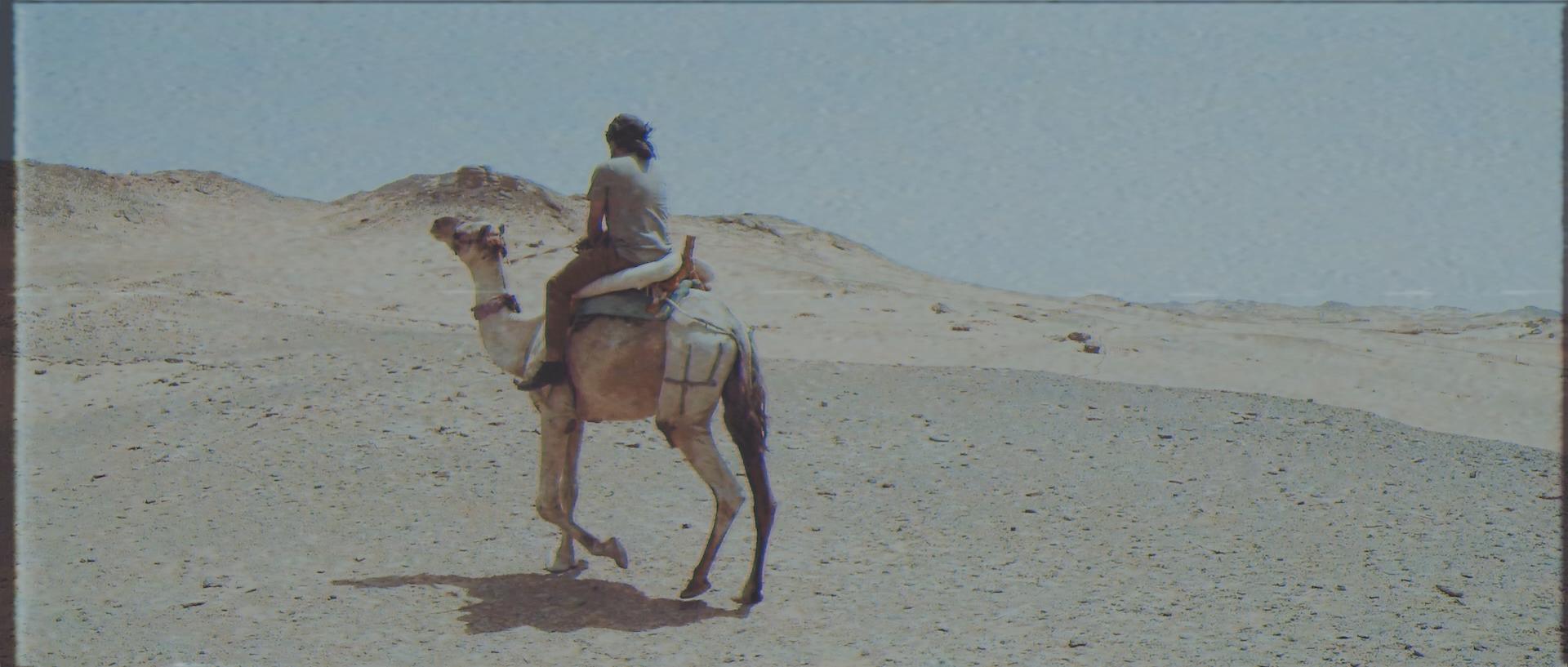 Stills - Cinema - Dp - Frame- Cinematographer - Miguel Bautista - Production - Filmmaking - Cine 036.jpg
