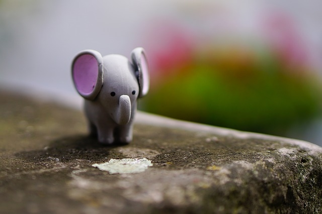 elephant-1606188_640.jpg