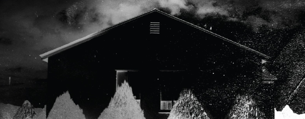 I'll Be Gone in the Dark - Book by Michelle McNamara