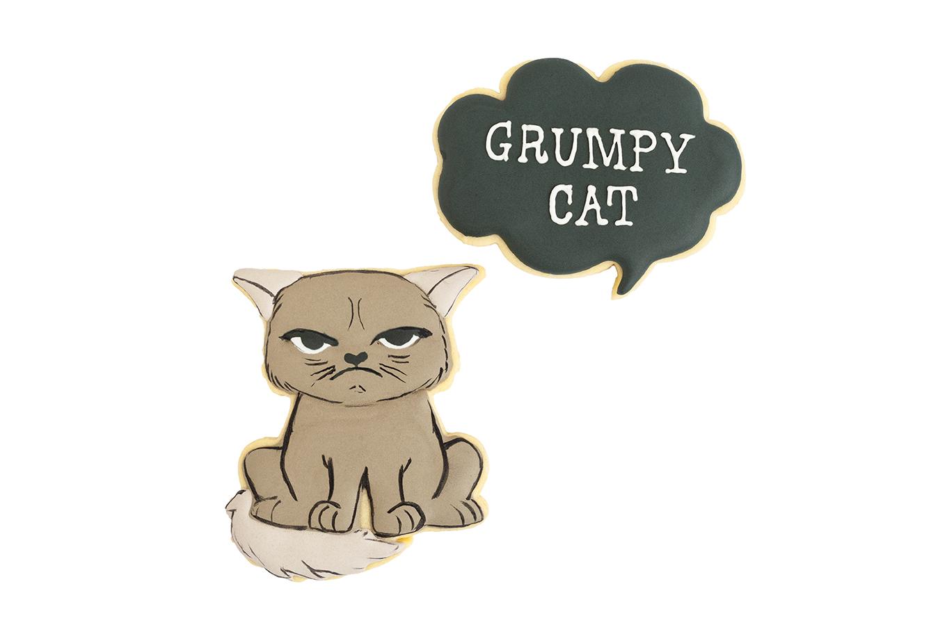 181126 - Grumpycat.jpg