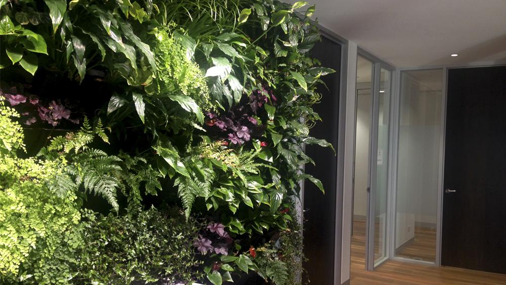 melbourne_indoor_gardens.jpg